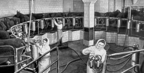 подсобный рабочий на ферме должностная инструкция
